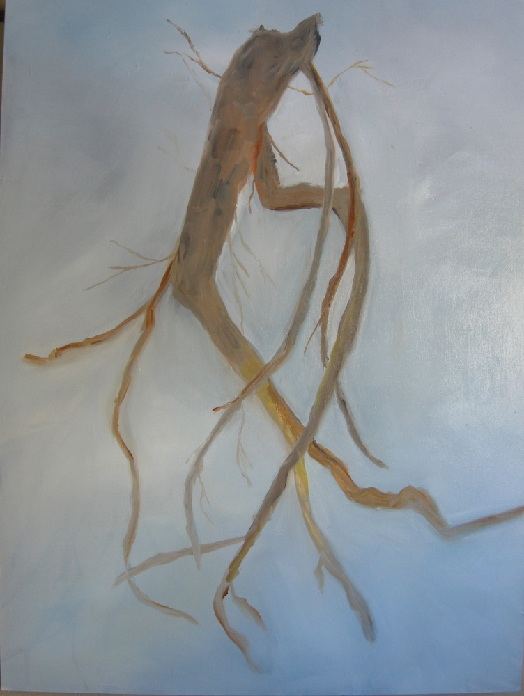 "Bristlecone Pine Root, 48"" x 36"", Oil on Canvas, 2013"