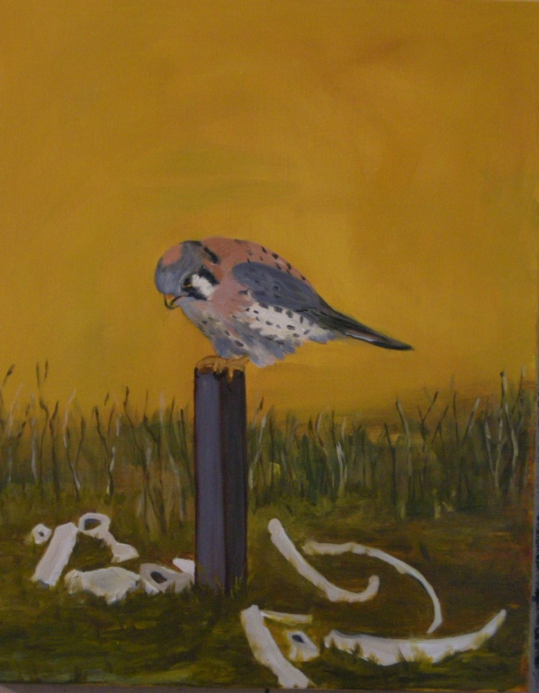 "American Kestrel, 30"" x 23.5"", 2015, Oil on linen."