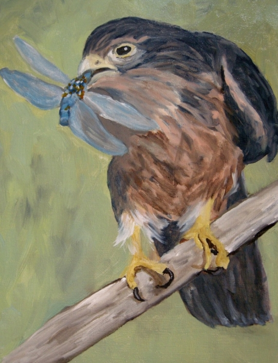 "Kestrel with Dragonfly, 14"" x 11"", Oil on Canvas, 2016"